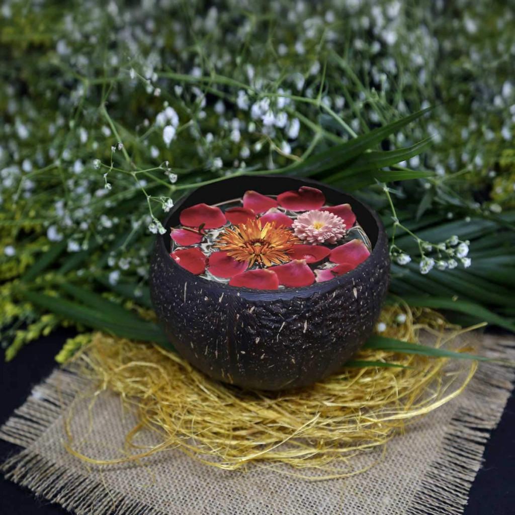 Coconut Bowls(#1071)-gallery-1