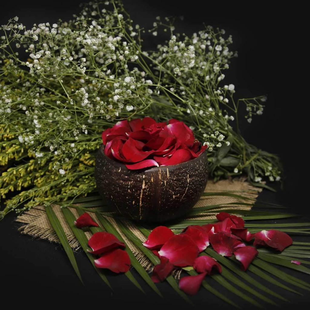 Coconut Bowls(#1071)-gallery-2
