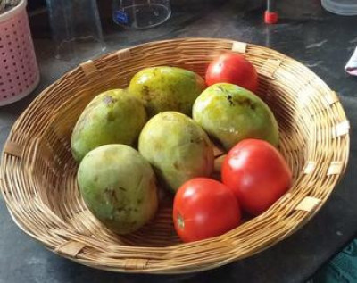 HAND MADE FRUIT BASKET(#1775)-gallery-0