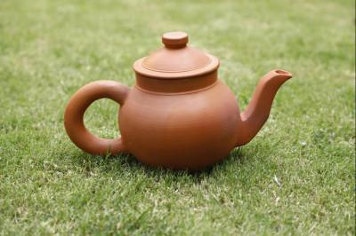 Tea Kettle(#1853)-gallery-0