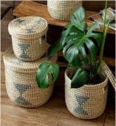 Sabai GrassSea grass planter(#2074) - Getkraft.com