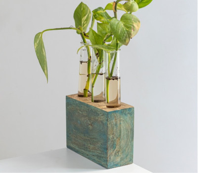 Kashtham Hand Painted Mango Wood Succulent Holder with3 Test Tubes(#2313)-gallery-0