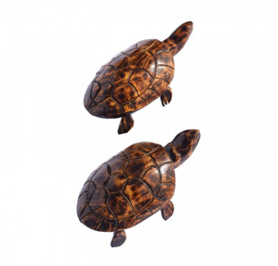 Wooden Tortoise(small)(#255)-gallery-0