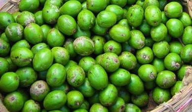 Omora Indian Hog Plum Pickle(#749)-gallery-1